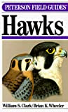 William S. Clark: Peterson Field Guide(R) to Hawks (Peterson Field Guide Series, 35)