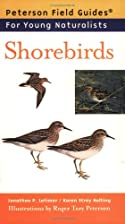 Shorebirds by Jonathan Latimer