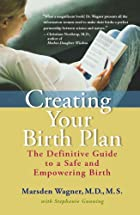 Creating Your Birth Plan: The Definitive…