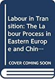 Smith, Chris: Labour in Transition: The Labour Process in Eastern Europe and China (Critical Perspectives on Work and Organization)