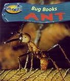 Macro, Chris: Ant (Take-off!: Bug Books)