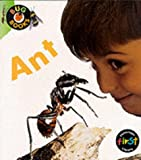 Macro, Chris: Ant (First Library: Bug Books)