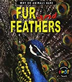Elizabeth Miles: Why Do Animals Have Fur and Feathers? (Why Do Animals Have) (Why Do Animals Have)