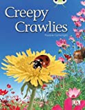 Cartwright, Pauline: Creepy Crawlies Green 2 (Bug Club)