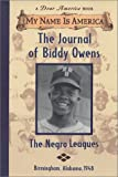 Myers, Walter Dean: The Journal of Biddy Owens, the Negro Leagues