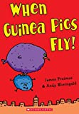 Andy Rheingold: When Guinea Pigs Fly!