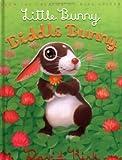 Kirk, David: Little Bunny, Biddle Bunny