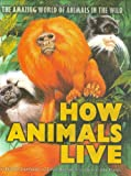 Stonehouse, Bernard: How Animals Live: The Amazing World of Animals in the Wild