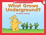 Fleming, Maria: Level B - What Grows Underground? (Little Leveled Readers: Level B)