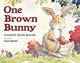 Bauer, Marion Dane: One Brown Bunny