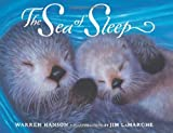 Hanson, Warren: The Sea Of Sleep