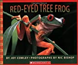 Cowley, Joy: Red-Eyed Tree Frog