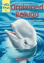 Orphaned Beluga by Susan Hughes