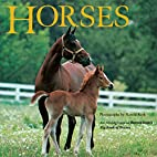 Horses by Laura Driscoll