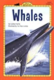 Faiella, Graham: Whales