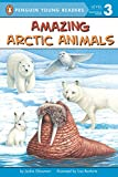 Glassman, Jackie: Amazing Arctic Animals