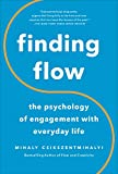 Csikszentmihalyi, Mihaly: Finding Flow: The Psychology of Engagement With Everyday Life