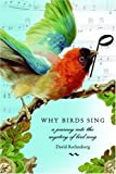 Rothenberg, David: Why Birds Sing: A Journey Through the Mystery of Bird Song