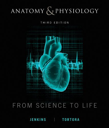 anatomy-and-physiology-from-science-to-life