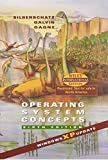 Peterson, James L.: Operating System Concepts: XP Version