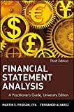 Martin S. Fridson: Financial Statement Analysis: A Practitioner's Guide (Wiley Finance Series)