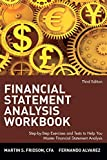 Fridson, Martin: Financial Statement Analysis Workbook: A Practitioner's Guide