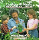 David Suzuki: Looking at Plants