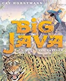 Horstmann, Cay: Big Java
