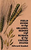 Knobel, Edward: Field Guide to the Grasses, Sedges and Rushes of the United States
