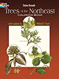 Bernath, Stefen: Trees of the Northeast Coloring Book