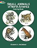 McClelland, Elizabeth: Small Animals of North America Coloring Book