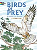 John Green: Birds of Prey Coloring Book (Dover Nature Coloring Book)