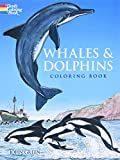 Green, John: Whales and Dolphins Coloring Book
