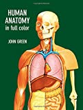 Green, John: Human Anatomy in Full Color