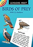 Sy Barlowe: Learning About Birds of Prey (Dover Little Activity Books)