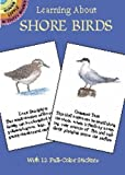 Sy Barlowe: Learning About Shore Birds (Dover Little Activity Books)