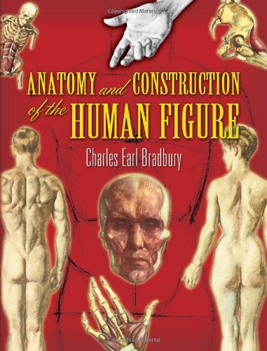 anatomy-and-construction-of-the-human-figure-dover-art-instruction