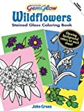 Green, John: Wildflowers GemGlow Stained Glass Coloring Book (Dover Nature Stained Glass Coloring Book)