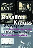 Rosalind E. Krauss: A Voyage on the North Sea: Art in the Age of the Post-Medium Condition (Walter Neurath Memorial Lecture)