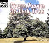 Kottke, Jan: From Acorn to Oak Tree