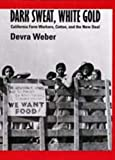 Weber, Devra: Dark Sweat, White Gold: California Farm Workers, Cotton, and the New Deal
