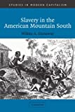 Dunaway, Wilma A.: Slavery in the American Mountain South