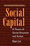 Lin, Nan: Social Capital: A Theory of Social Structure and Action