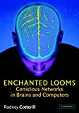 Cotterill, Rodney: Enchanted Looms: Conscious Networks in Brains and Computers