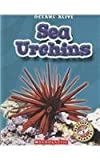 Rustad, Martha E. H.: Sea Urchins