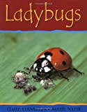 Watts, Barrie: Ladybugs