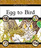 Scrace, Carolyn: Egg to Bird (Cycles of Life (Paperback Franklin Watts))