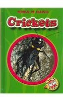 Crickets by Emily K. Green