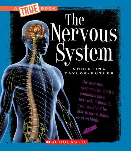 the-nervous-system-new-true-books-health-paperback