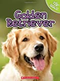 George, Charles: Golden Retriever (Top Dogs (Children's Press))